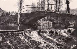 Cpsm VIANE-PIERRE-SEGADE Le Gijou-pont De Sigarié - Non Classificati