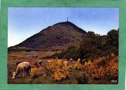 Le Puy De Dôme (63) (vaches) - Non Classés