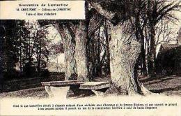 Saint Point   321         Château De Lamartine. Table Et Banc D'Abeilard    . - France