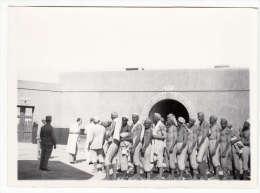 Maroc - Photo Format 18 X 13 Cm  - Dans Les Prisons, Vaccination Contre Le Typhus - Africa
