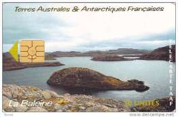 TAAF, TAF-26, La Baleine, 2 Scans. - TAAF - French Southern And Antarctic Lands