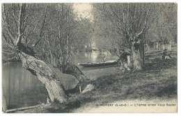 PERIGNY (Val De Marne Anciennement Seine Et Oise) - L'Yerres Et Les Vieux Saules - Animée - Pêcheur - N°12 - Perigny
