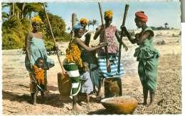 Senegal Pileuses - Sénégal