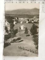 CPSM - TUNISIE - KASSERINE - Place Du Marché - Túnez