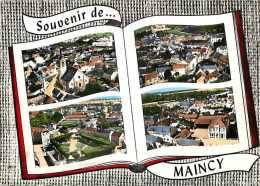 Seine Et Marne -gd Format -ref L379- Vue Aerienne -souvenir De Maincy - Multivues  -carte Bon Etat  - - Francia