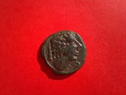 Bronze Langostalete Au Lion - Galle