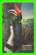 TÉLÉCARTES, THAILANDE -  BIRDS, RHINOCEROS HORNBILL - BUCEROS RHINOCEROS - 300 BAHT - PHONECARDS - AUGUST/2004 - - Oiseaux