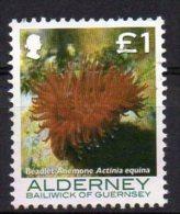 ALDERNEY 2006 Corals & Anemones £1 Used - Alderney