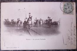 ALGERIE.BISKRA.LA GRANDE FANTASIA.CIRCULE 1905.DOS NON DIVISE.TBE. - Biskra