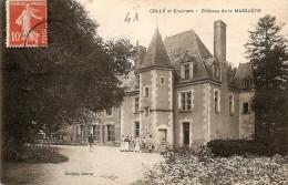 41 CELLE ET ENVIRONS CHATEAU DE MASSUERE ANIMEE - France