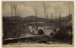 VIANE PIERRE SEGADE  -   Le Pont De Planco Moulinos -  Ed. Gourc, N° -- - Altri Comuni