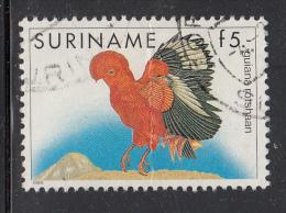 Surinam Used Scott #728 5g Guyana Red Cockerel - Birds - Creased - Surinam