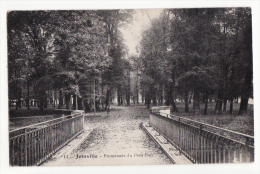 52  JOINVILLE   Promenade Du Petit Bois - Joinville