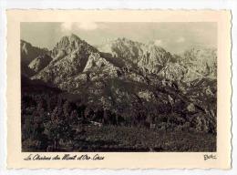"""CORSE :  """" La Chaîne Du Mont D' Oro  """" - Postée D' Ajaccio - Carte Photo Renée N° 1146 - Andere Gemeenten"""