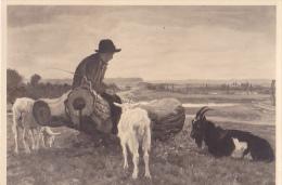 HDK6  --  MUNCHEN  -- HAUS DER DEUTSCHEN KUNST  -  PHOTO HOFFMANN  --  CHEVRES - Postcards