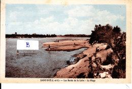 SAINT DYE Les Bords De La Loire - La Plage - France