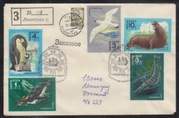 RUSSIA 1983 COVER Used PHILATELIQUE EXPOSITION POLAIRE ANTARCTIQUE FAUNA FISH POISSON BIRD OISEAU VOGEL PENGUIN Mailed - Events & Commemorations