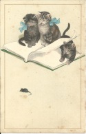 Fantaisie - Chats Chatons Et Souris - Chats