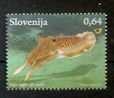 Slovenia 2013,tintenfisch,cuttlefish,mnh - Fishes