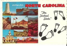 """Greetings From North Carolina  """"The Tarheel State"""" - United States"""