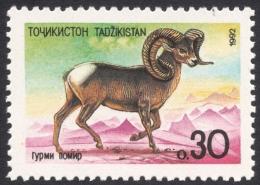 Tajikistan, 0.30 R. 1992, Sc # 4, Mi # 4, MNH - Tajikistan