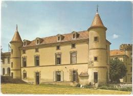 Dépt 63 - ARLANC - (CPSM 10.4x14.6cm) - Château De Mons - France