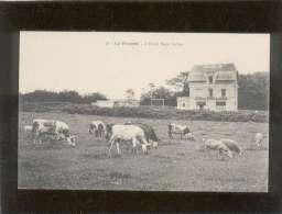 35 Dinard La Vicomté  L'hôtel Beau-vallon édit. Artaud Nozais N° 56 Vache  Brebis Moutons - Dinard
