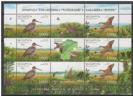 Belarus 2007. Wild Animals / Birds Sheet MNH (**) - Briefmarken