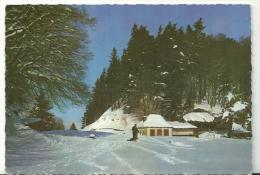 Cantal :  LE  LAC    PAVIN , En  Auvergne  1968 - France