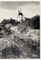 St JEAN DE MONTS--1966--Moulin Au Pays Des Monts ,cpsm 10 X 15  N° 100  éd  P.Marlin - Saint Jean De Monts