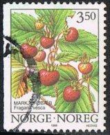 Norway SG1224 1996 Wild Berries (2nd Issues) 3k.50 Good/fine Used - Norwegen