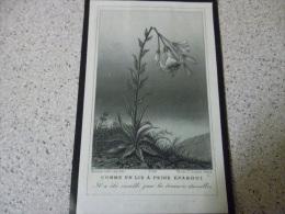 IMAGE PIEUSE     Comme Un Lis A Peine Epanoui 1896..deces - Images Religieuses