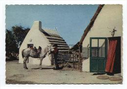 8124 - En Camargue Avec Les Gardians (13) - Andere Gemeenten