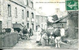 N°35538 -cpa Une Ferme Aux Environs De Bricquebec (50) - Fermes