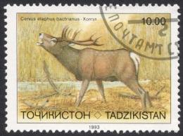 Tajikistan, 10 R. 1993, Sc # 16, Mi # 23, Used - Tajikistan