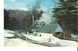 Vt. 725  Maple Sugaring In Vermont - United States