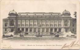 PARIS - Musée De Zoologie Au Jardin Des Plantes - Museums
