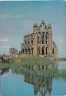 BT17788  Whitby Abbey Yorkshire   2 Scans - Whitby