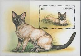 Lesotho. Tonkinese Cat. 1998. MNH SS. SCV = 5.00 - Hauskatzen