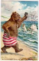 Bear In Swim Suit, Morning Dip / Tuck's 118 Little Bears - Bears