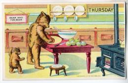 Bears Doing Dishes - Thursday - Bears
