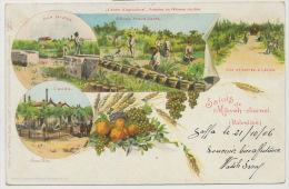 Saluts De Mikveh Jisrael Palestine Ecole Agriculture  Litho Wilhelm Grofs P. Used Jaffa 1906 Type Blanc - Palestine