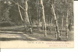 ST. LOUIS  MO.   U.S.A.      FOREST  PARK   ( ECRITE EN 1907  ) - St Louis – Missouri