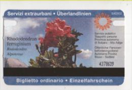 Alt404 Biglietto Autobus Ticket Bus   Bolzano, Bozen   Provincia Autonoma Alto Adige, Fiore Rododendro, Flower, Fleure - Autobus