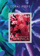 Dominica-2013-MARINE LIFE-Coral Reef - Marine Life