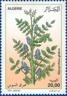 Algérie N° 1639 Fleur Flore Flora Plantes Médicinales Plants Glycrrhiza Glabra Réglisse Licorice Lakritze Regaliz - Medicine