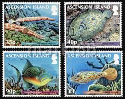 Ascension Island - 2012 - Reef Fish, Part 2 - Mint Stamp Set - Ascension (Ile De L')