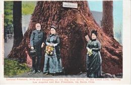 U.S.   GENERAL  FREMONT  And  FAMILY  BIG  TREE  GROVE  SANTA  CRUZ,  CALIF.  PRE  1907   MINT - USA National Parks