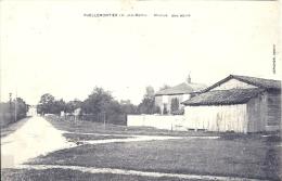 CHAMPAGNE ARDENNE - 52 - HAUTE MARNE - PUELLEMONTIER - Avenue Des Alliés - Francia