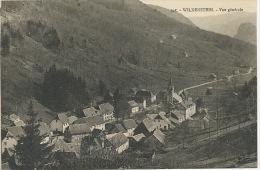 Wildenstein 945 Vue Generale  Visé Belfort  Edit Chadourne - Sonstige Gemeinden